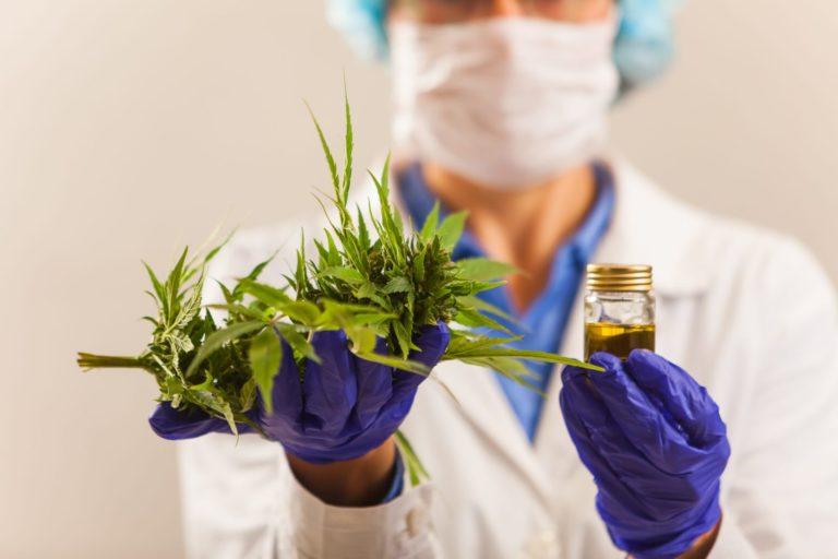 Medizinischer Cannabis – Verabschiedung der Änderung des Schweizerischen Betäubungsmittelgesetzes (Medikamente auf Cannabisbasis)