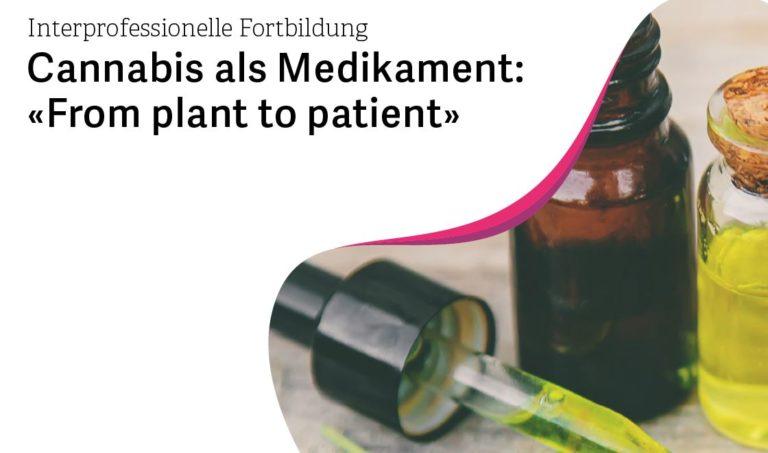 AUSBILDUNG : Cannabis als Medikament – «From plant to patient»